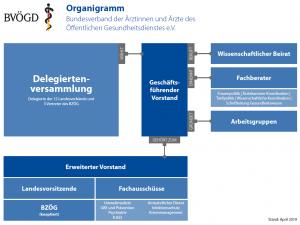 Organigramm des BVÖGD